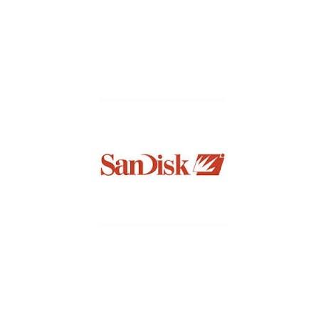 """SANDISK X300 2.5"""" 256GB SATA SSD"""